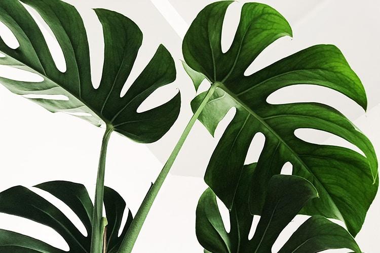 De anti-greenwashing guide, online écht duurzame kleding vinden